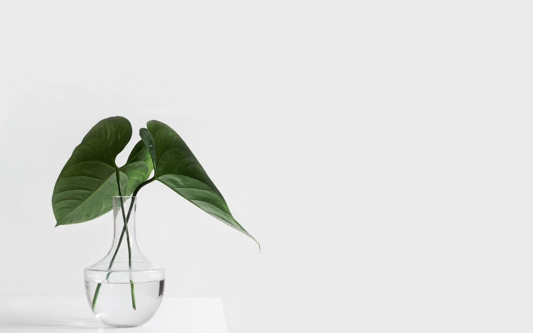 Three Ways You Can Become A Minimalist